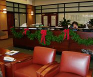 Holiday Decor, Holiday plant arrangements in Greenville