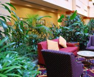 Interior plants help college students be more productive, Interior plants give a University an Air of Success.